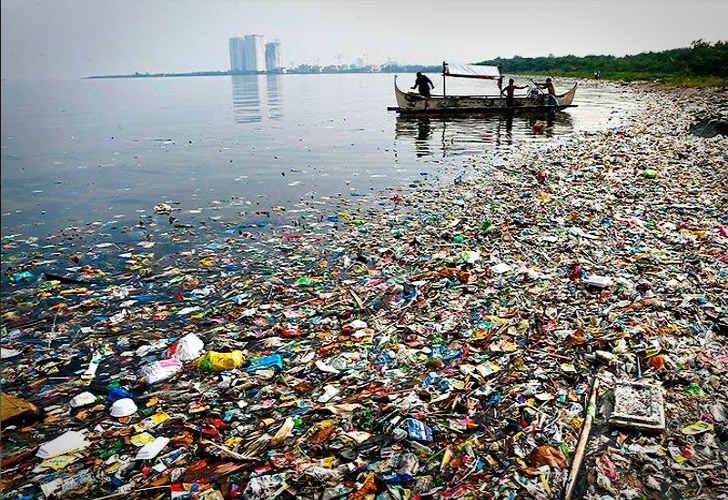 150 millones de toneladas de plástico ingresan en los mares