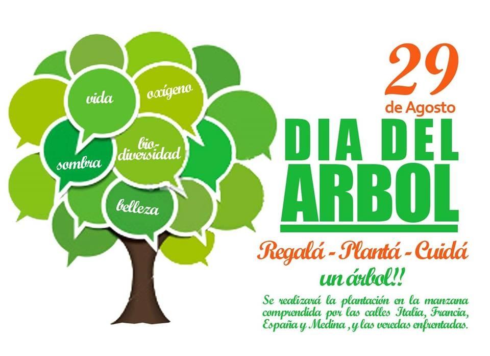 29 de agosto Celebración del Día del Árbol tiene una explicación